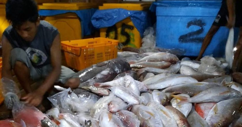 Indonesia wants to grow its fishery industry amid slowdown, but needs better infrastructure and manpower