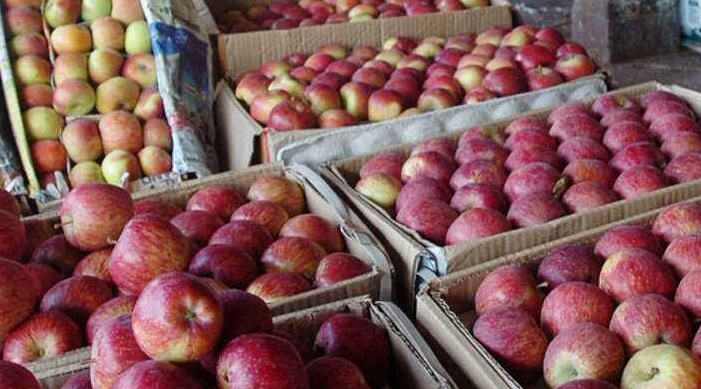 J&K sets sight on Middle Eastern market for its horticulture produce