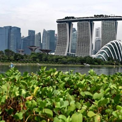 Commentary: The merits of Singapore's new carbon trading marketplace